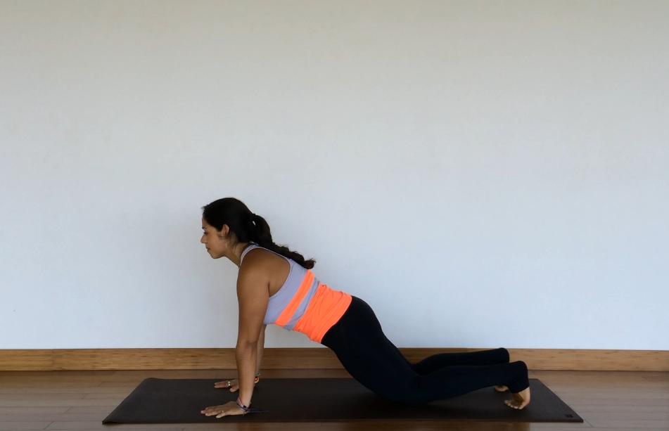 yoga tutorial: plank pose