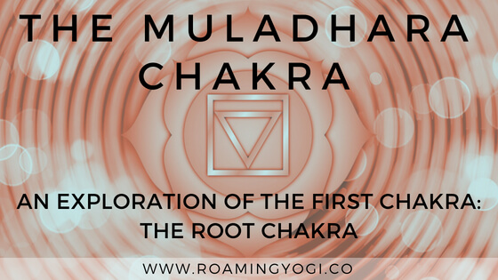 What is the Muladhara Chakra? An exploration of the root chakra, with a first chakra grounding yoga sequence!