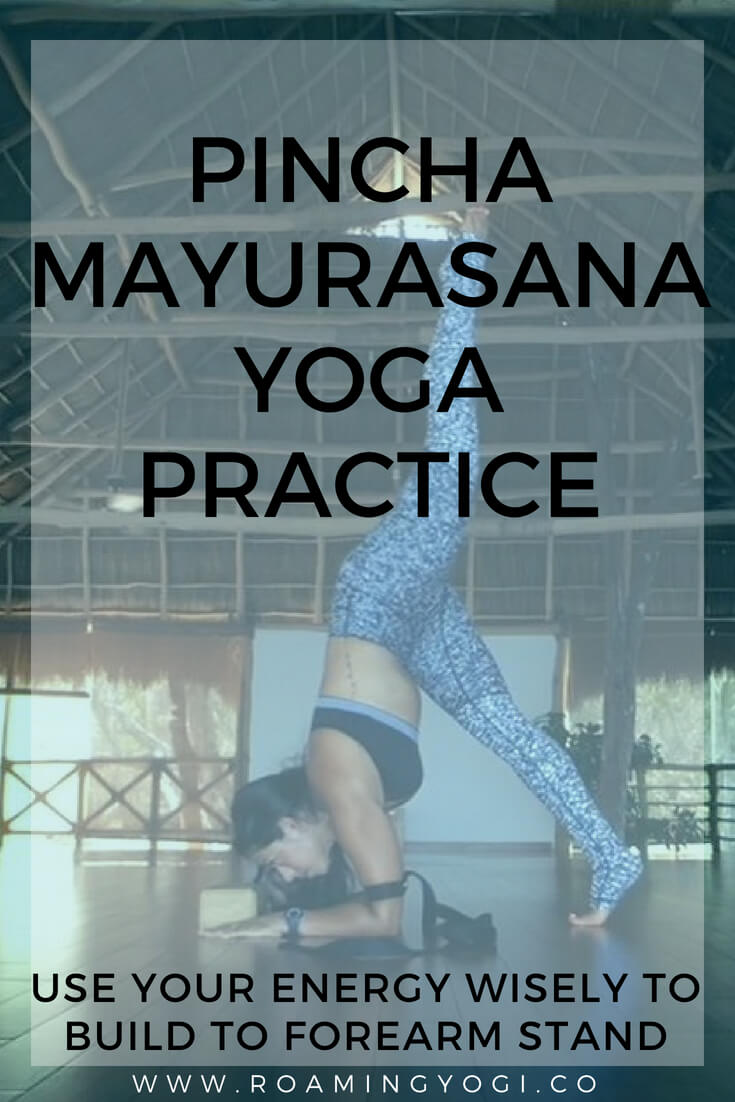 Pincha mayurasana is a strong inversion that requires strength and stability. Use your energy wisely in this vinyasa flow that builds up to forearm stand!