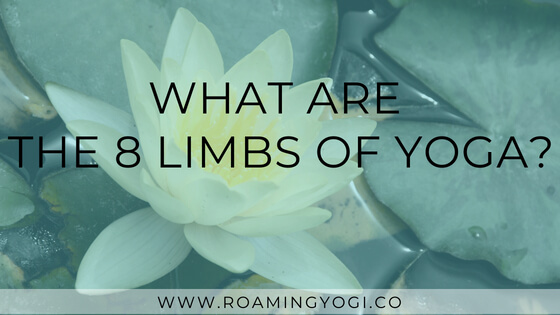 What Are The 8 limbs of yoga? An accessible introduction to the eight limbs of yoga.